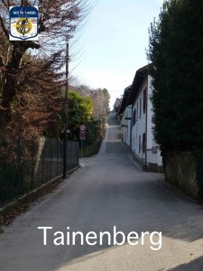 m21 Tainenberg