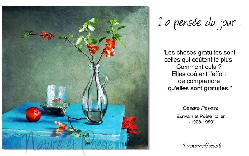 Gratuité Café Poésie