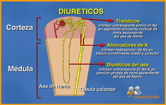 ¿Por qué administrar diuréticos tiazídicos para la diabetes insípida?