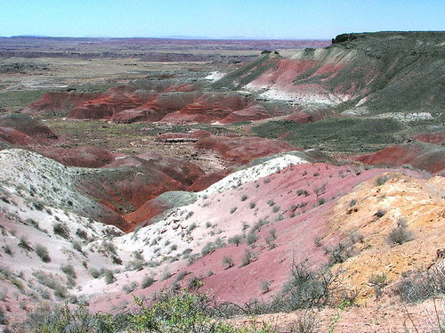 Painted Desert by heartonastick