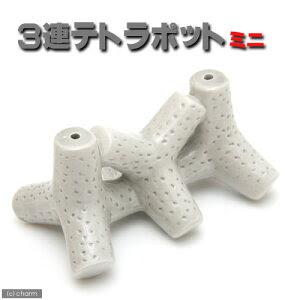 小さくてかわいい水槽アクセ!3連テトラポット ミニ F-20 【あす楽対応_関東】