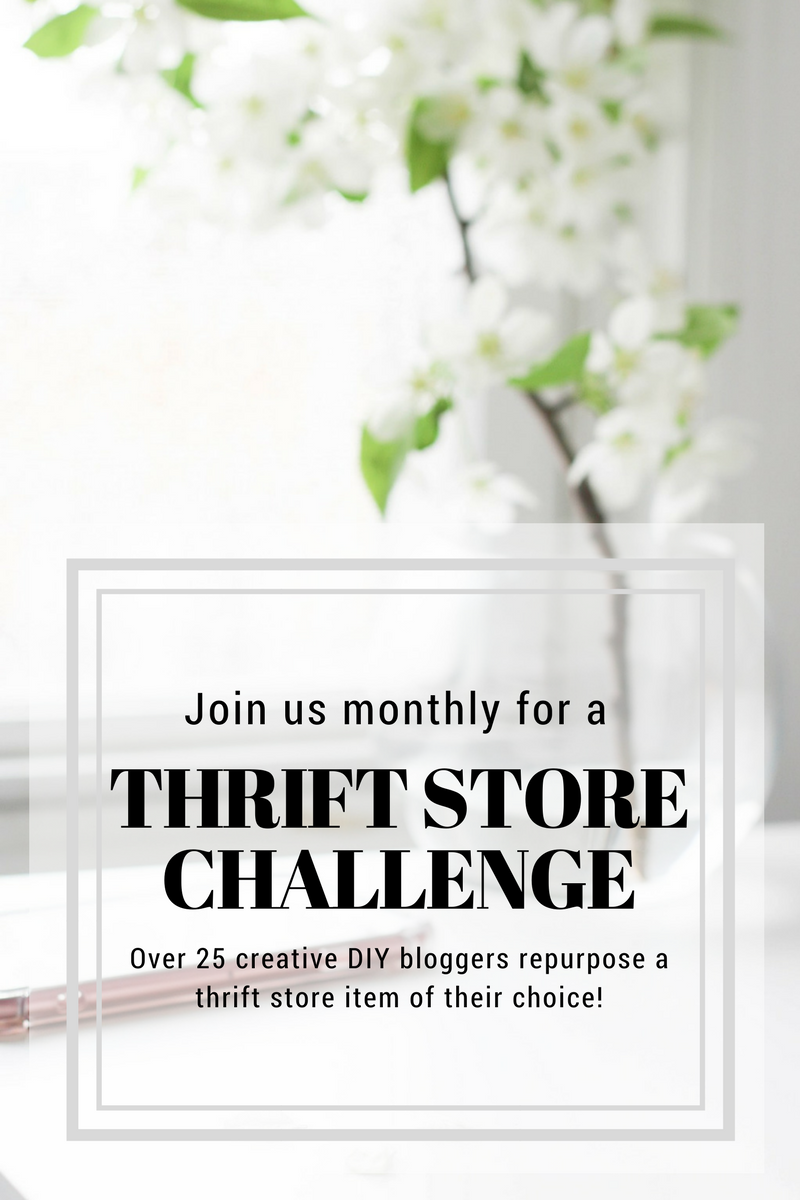 monthly blogger thrift store challenge