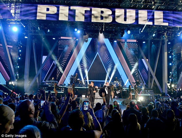 Good times: Audience members had their hands up in the air as Pitbull performed