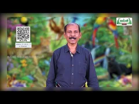 11th Zoology உயிருலகம் பாடம் 1 Kalvi TV
