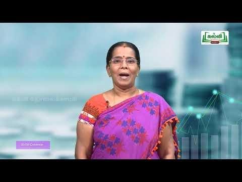 12th Commerce Enterpreneur Company Kalvi TV