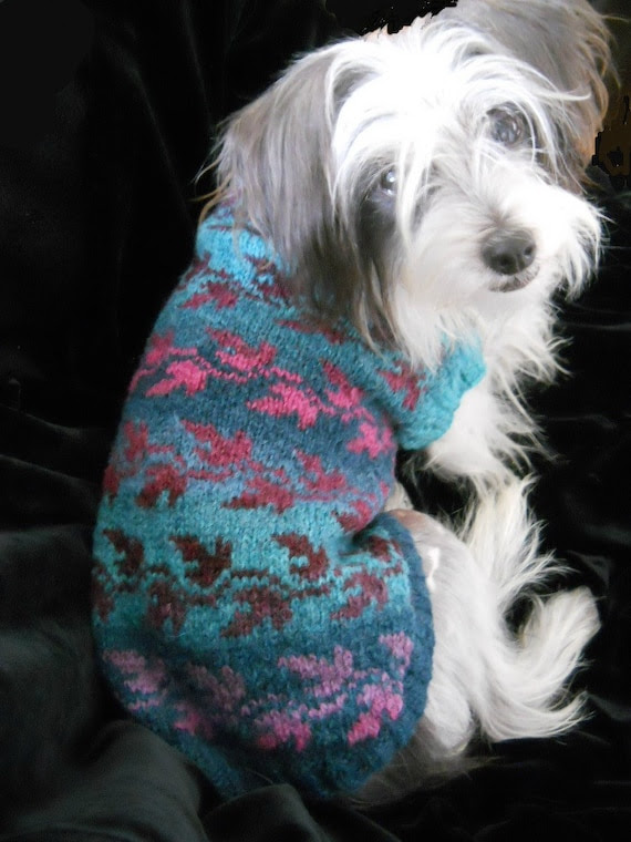 LEAF PLAY Fair Isle Dog Sweater -- Custom -- Hand Knit -- All Sizes & Colors