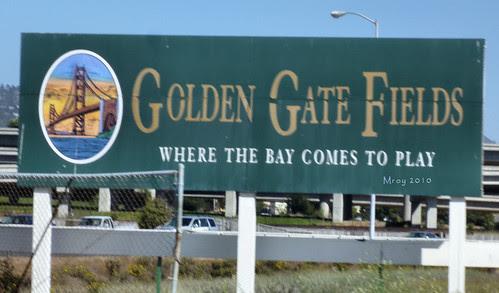 golden gate fields 085