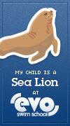 My child is a sea lion at EVO Swim School