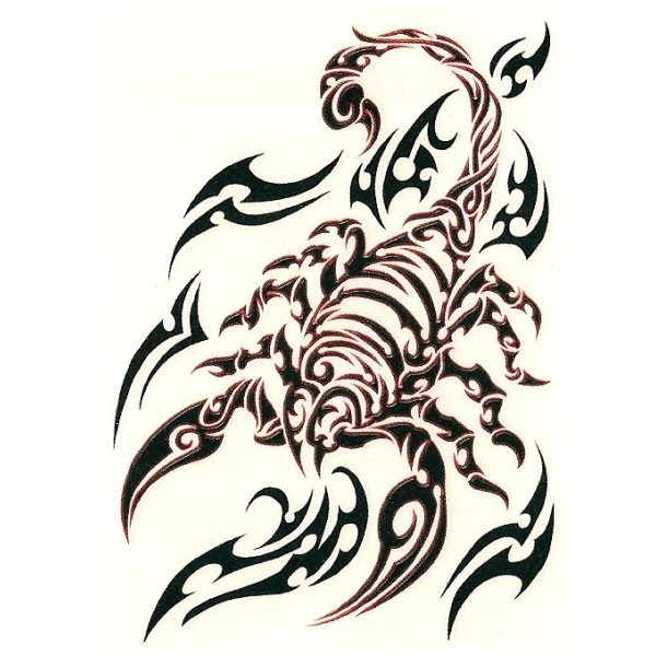 Tribal Scorpion Drawing At Getdrawingscom Free For Personal Use