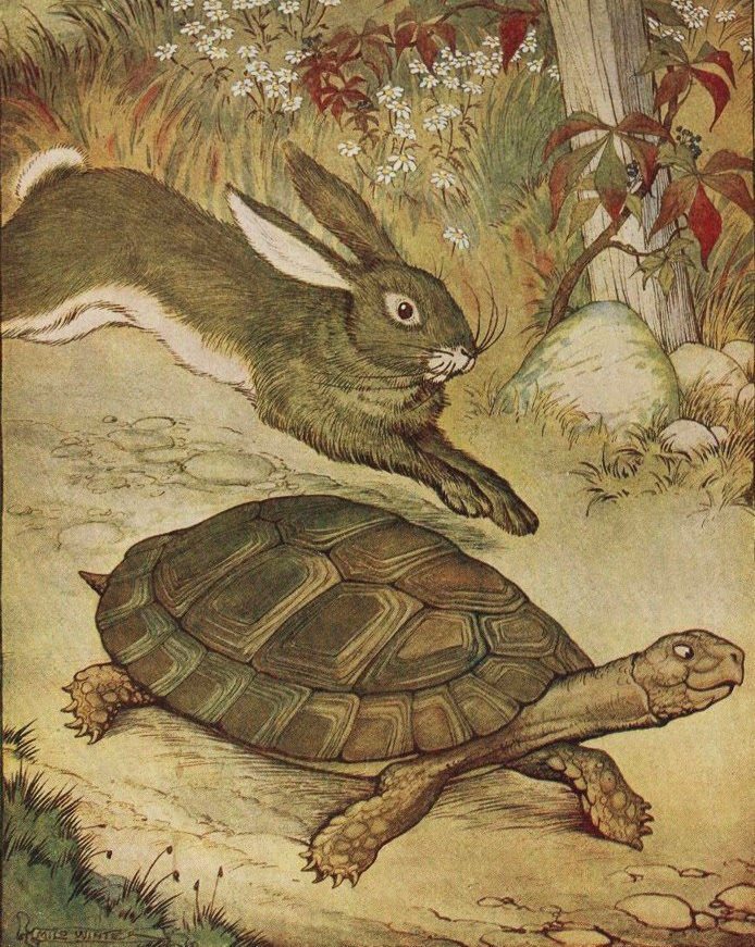 The Tortoise And The Hare Tonis Esl Space