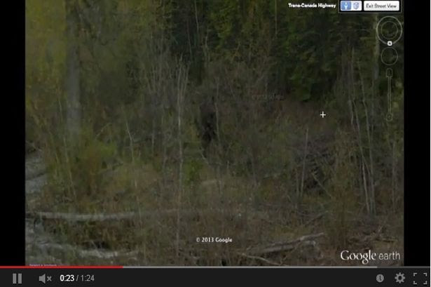 Mysterious: But does this image captured on Google Earth show Bigfoot?