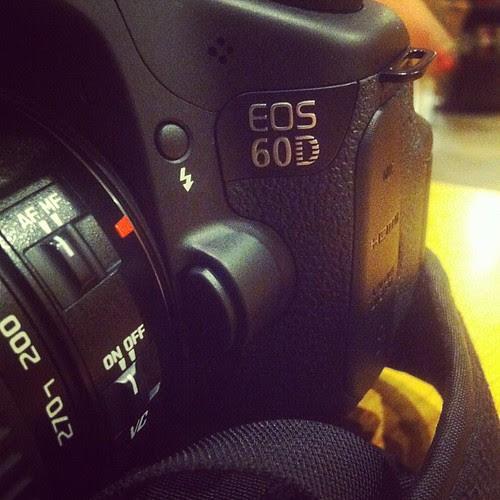 New camera & no card - what a dork!