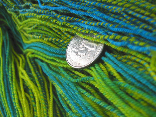 macaw strands