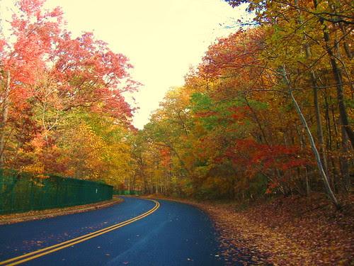 Autumn on Reservoir Road by Ken Ronkowitz on Flickr