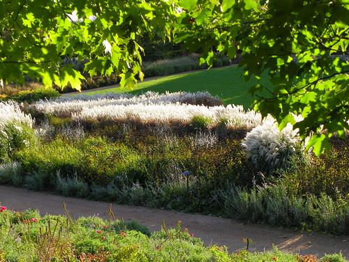 Chicago Botanic Garden (71)