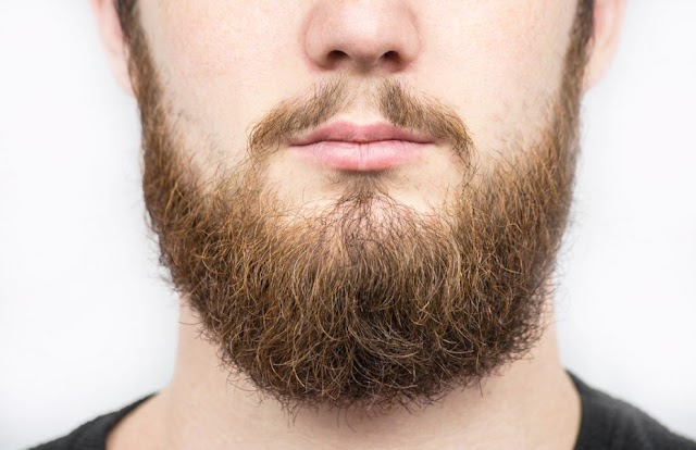 Men with beards carry more germs than dogs do - Study.