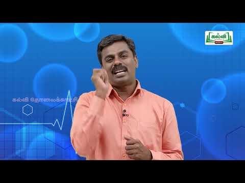 வகுப்பு 10 அறிவியல் அலகு 20 இனக்கலப்பு உயிரித்தொழில்நுட்பவியல் Kalvi TV