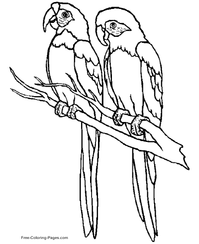Birds To Coloring Pages