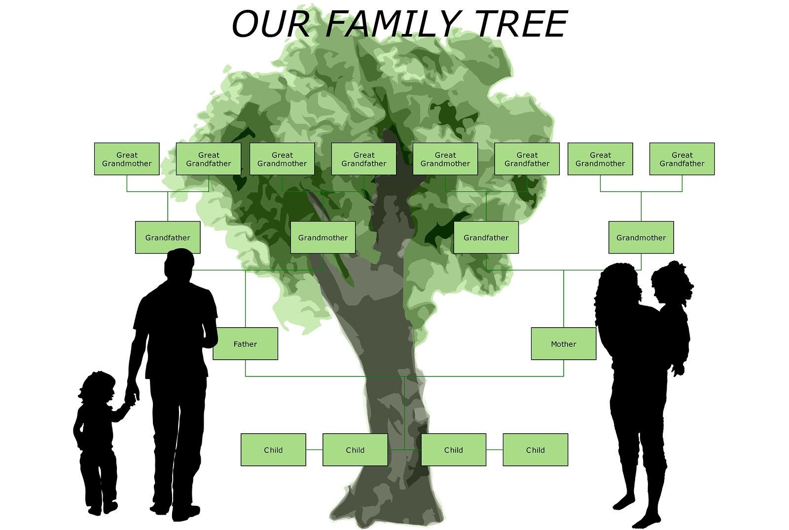 Steps In Gathering The Family Tree Leaves Familytreecom