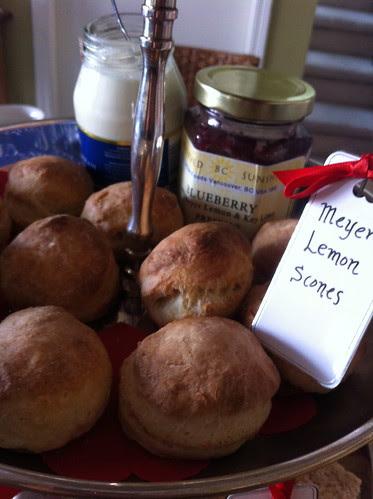 Meyer Lemon Scones + Blueberry & Meyer Lemon Marmalade