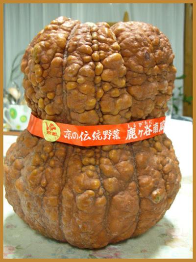 Shishigatani Pumpkin Kyoto