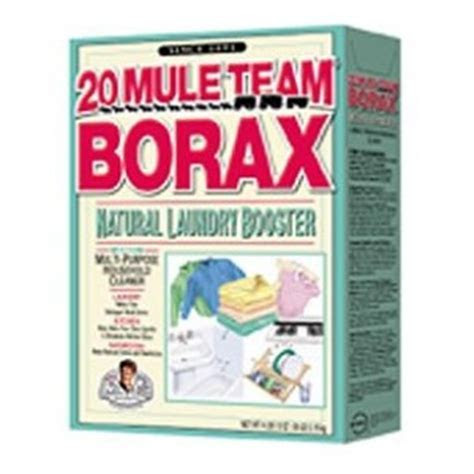"The Biz of Life: 25 Uses for Borax, ""The Miracle Mineral"""