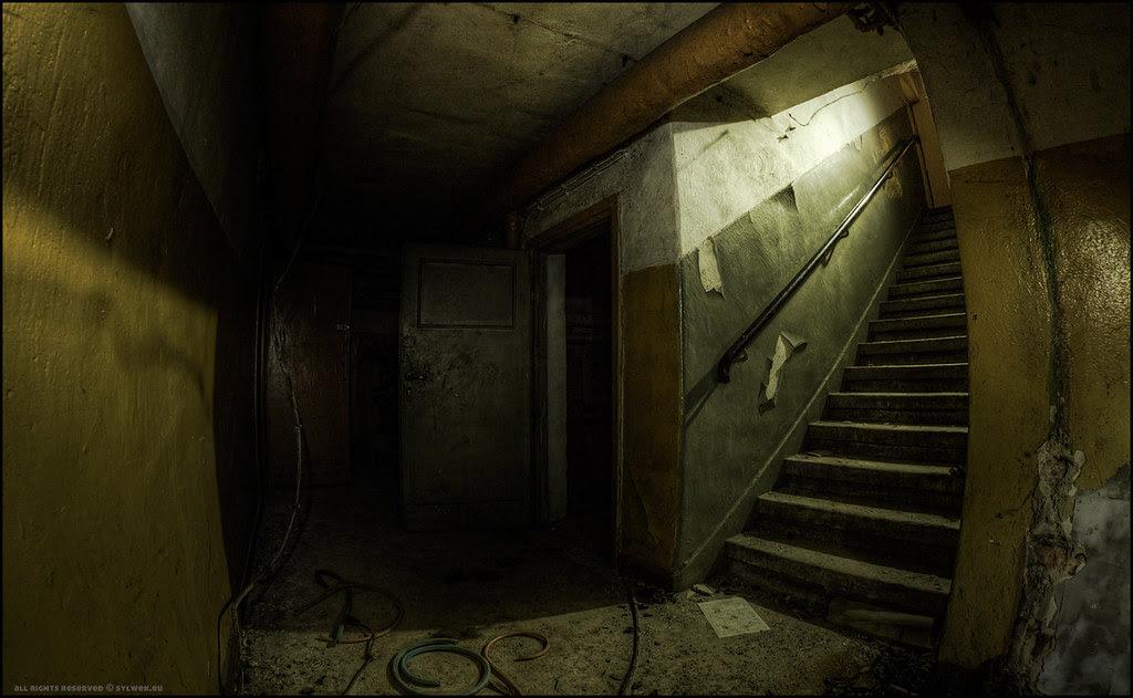 Dark Cellar View Large On Black Recommended 5y12u3k