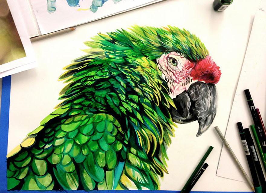 ilustraciones-animales-color-katy-lipscomb (1)