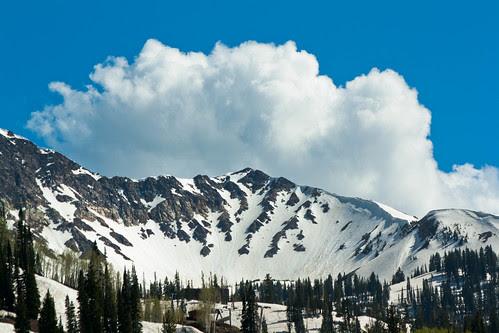 Snowbird mountain bowl
