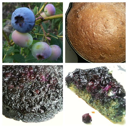 Blueberry Upside Down Cake by Ayala Moriel