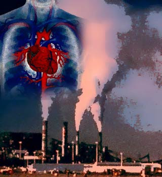 Image result for images of heart pollution