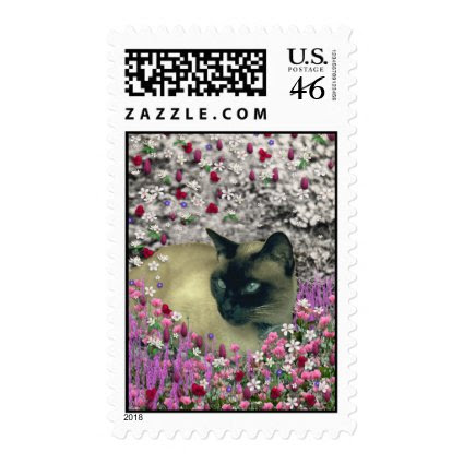 Stella in Flowers I – Chocolate Cream Siamese Cat Postage Stamp
