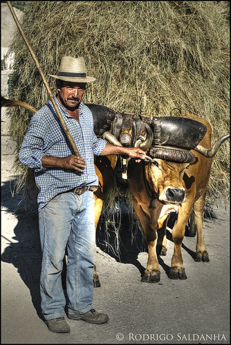 Portugal Rural by Rodrigo Saldanha de Almeida