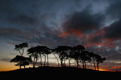 Gollanfield Dawn by Fraser Ross