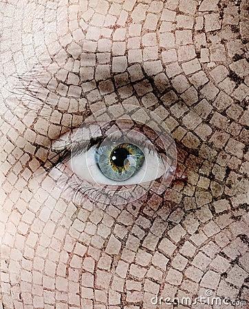 Cracked Skin, Closeup Royalty Free Stock Image - Image: 17989416