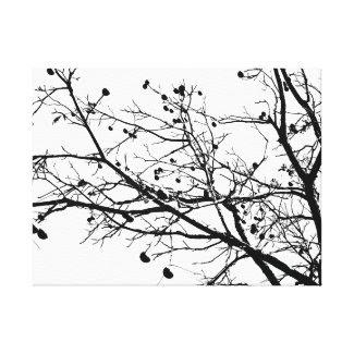 Black and White Winter Tree wrappedcanvas