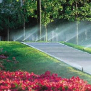 Treasure Coast Sprinklers Inc.  Vero Beach, FL  Business