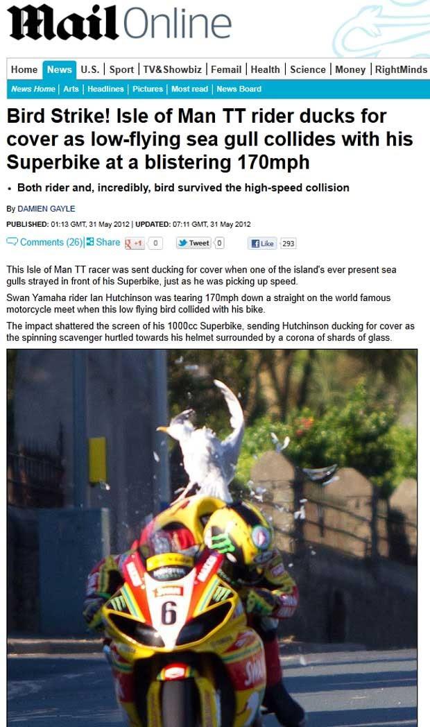 Motociclista se chocou contra uma gaivota durante treino na Ilha de Man. (Foto: Reprodução/Daily Mail)
