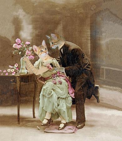 Aimer chats en 1900. La déclaration d'amour. Peinture, illustration Banque d'images - 35981883