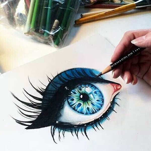 color pencil drawing Examples (40)
