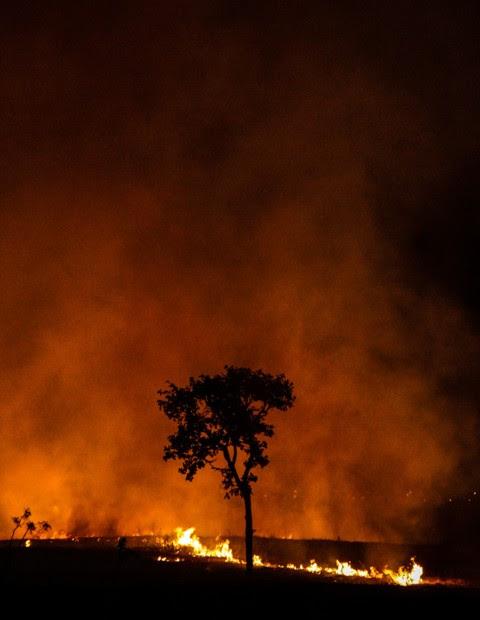 20/08/12. Crédito: Ana Rayssa. Brasil. Brasília - DF. incêndio próximo ao setor de clube sul.
