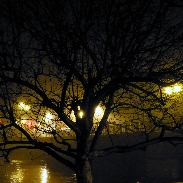 Like a London Fog II