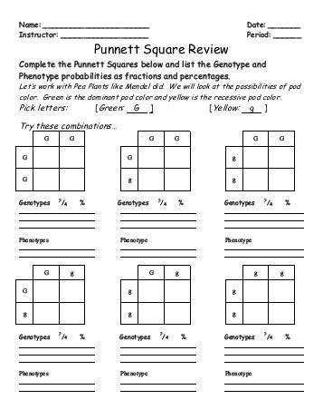 Punnett Square Practice Worksheet with Answers