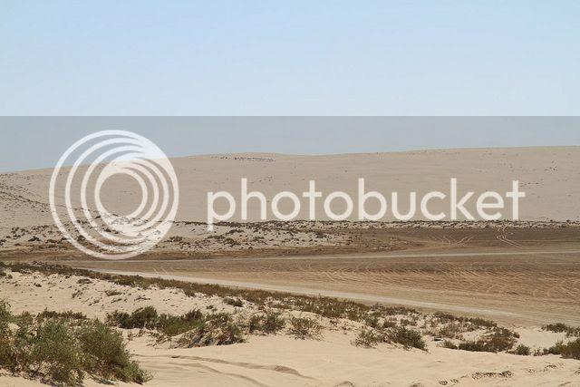 Qatar's landscape