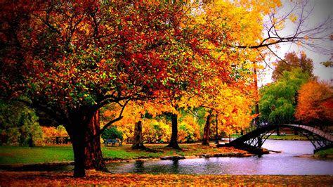 autumn wallpaper examples   desktop background