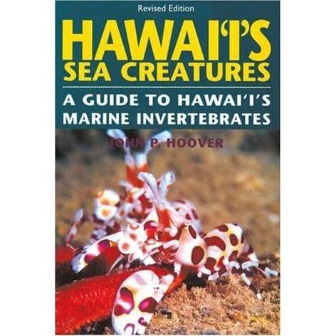 HawaiIs Sea Creatures