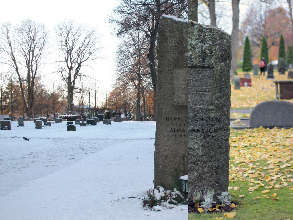 Winter & Autumn at the Cemetery