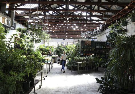 Eleven of Melbourne?s Best Florists   Broadsheet