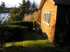 sommer, høst, 2008 096