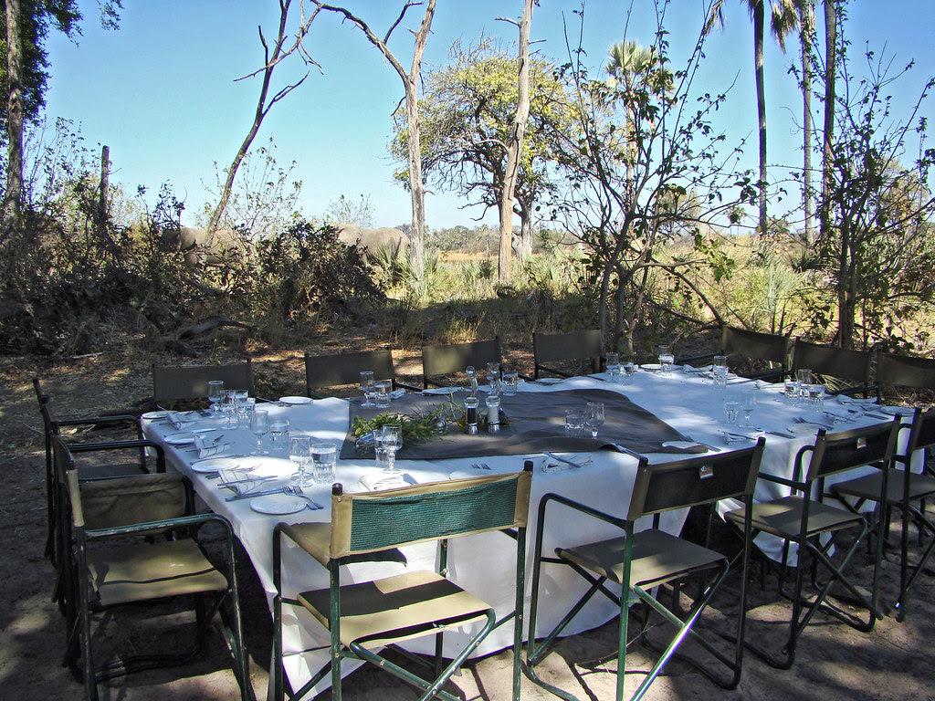 DSC08189 Picnic table in the bush